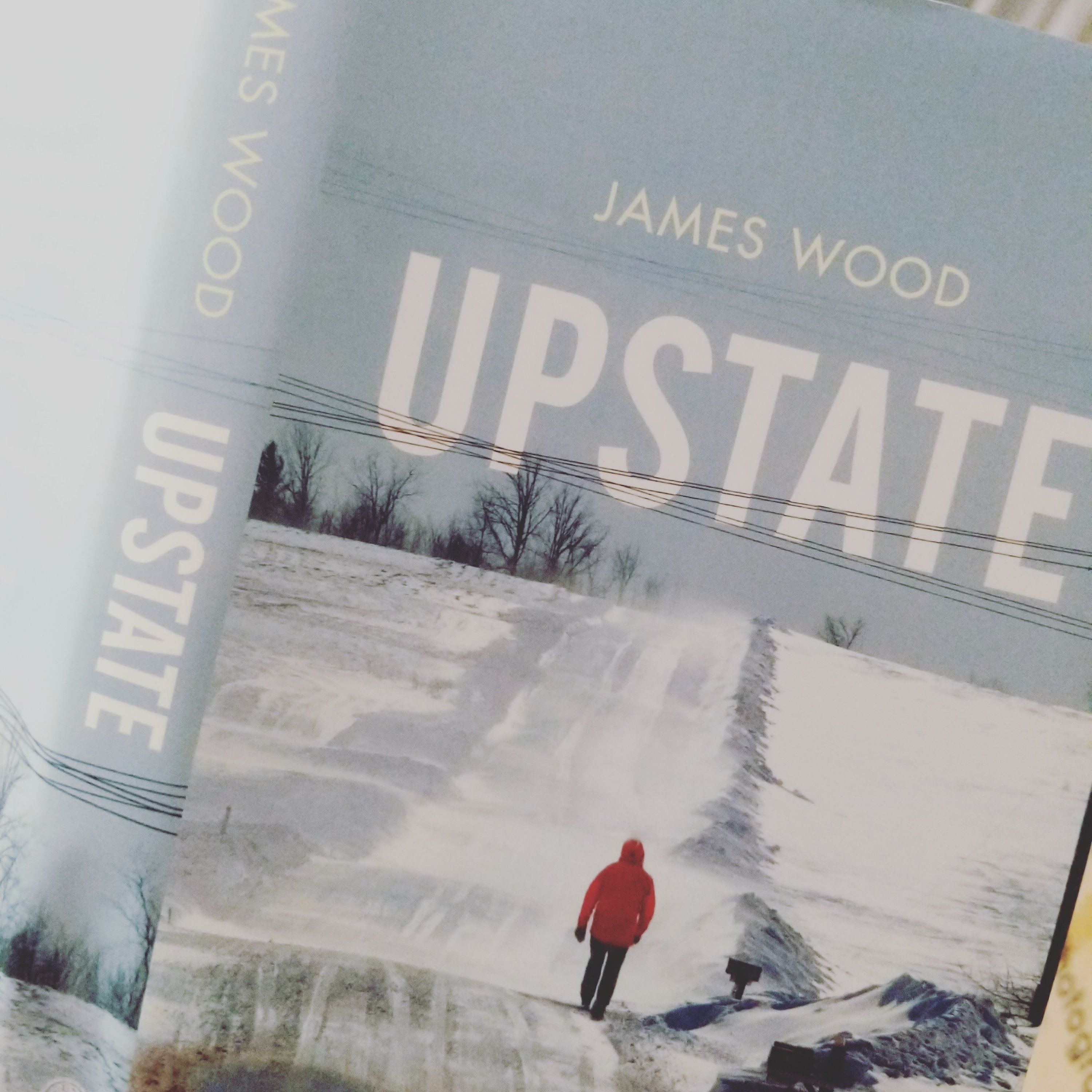 """Upstate"""" by James Wood"""